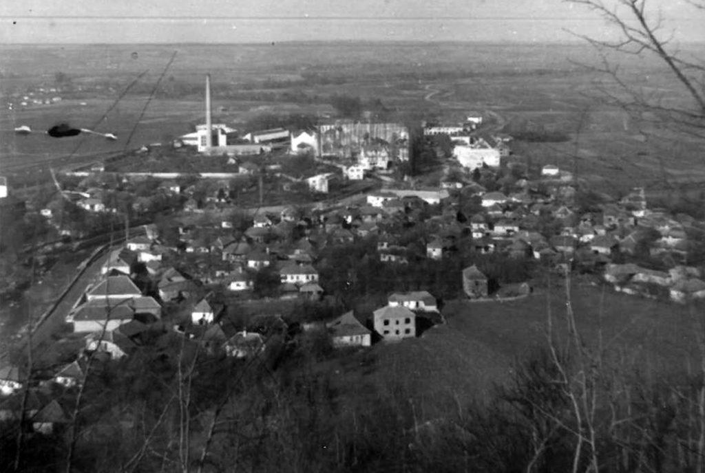 Панорама Вучја 1955