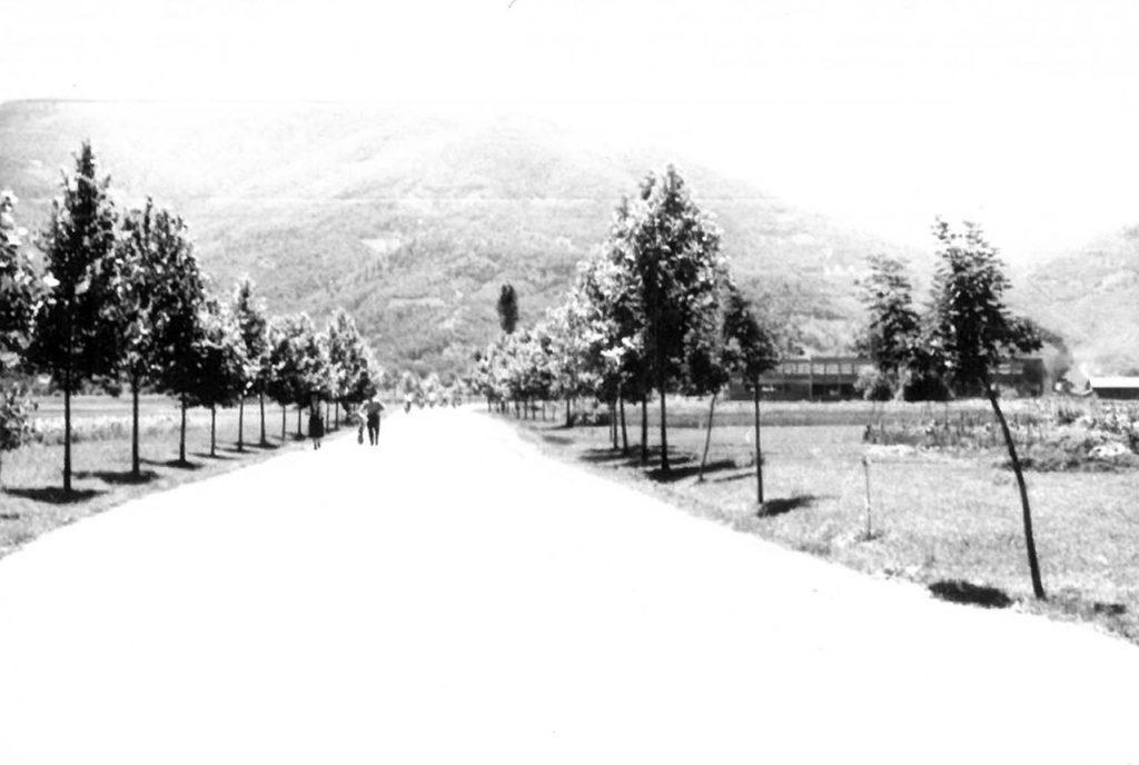Нови пут - улазак у Вучје 1957